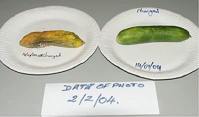 Day 19 Cucumber