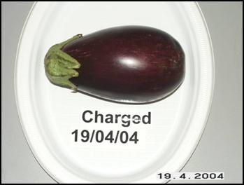 Charged Eggplant